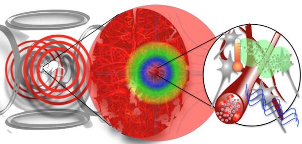 Blut Hirn Schranke Mit Nanomagneten Fur Medikamente Offnen
